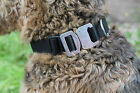 NEW UK Manufactured ONiE Range High Quality Dog Collar Security Close Protection