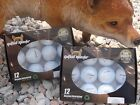 Titleist Pro V1 and ProV1X Refinished Golf Balls  FREE Tour Tees