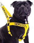 NERVOUS Yellow Adjustable Pet Dog Harness Or Short Standard Extra Long Lead Sets
