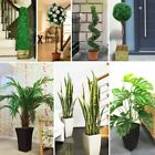 1.4M Artificial Tree Cone Spiral Twist Topiary Fig Bay Rose 3ft 4ft Office Plant