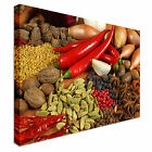 Herbs And Spices From Around the world Canvas Art Cheap Wall Print Home Interior