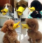 Cute Pet Dog  Puppy Anti-barking Muzzle Duck Face Lip Mouth Guard Protection LA