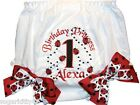 Personalized Diaper Cover Bloomers Red & Black Ladybugs 1st Birthday