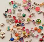 Various Charms for Living Memory floating Glass Lockets