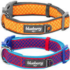 Blueberry Pet Urban Chic Diamond Pattern Neoprene Padded Dog Collar