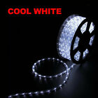 50' 100' 150' LED Rope Light 110V Home Party Christmas Decorative In/Outdoor