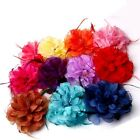 Party Lady Women Handmade Mixed-color Fascinator Feather Headband Clip Brooch