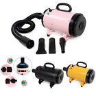 2800W Lowest Noise Pet Hair Dryer Dog Cat Grooming Blaster Blower Hairdryer 2017