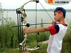 Recurve bow hunting bows and arrows The recurve bow hunting
