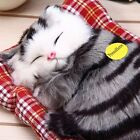 Lovely Simulation  Doll Plush Sleeping Cats Toy with Sound Kids Birthday Gift