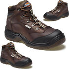 MENS DICKIES SAFETY STEEL TOE CAP MIDSOLE BOOTS ANKLE HIKER WORK WALKING SHOES