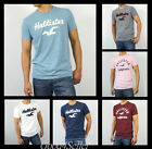 cream shirts for men - New Hollister by Abercrombie Men Crew Neck Graphic T-shirt Graphic Muscle Fit
