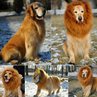 New Cute Lion Mane Wig For Pet Cat Dog Halloween Costume Festival Fancy Dress