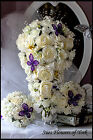 Luxury Purple & Ivory Package Various Packages Available