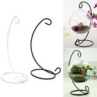 "1X 23cm 9"" Iron Plant Stand Holder for Clear Glass Hanging Vase Home Decor MDXLJ"