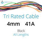 Black 4mm 41AMP 12V Tri Rated Cable Panel Wiring Loom Automotive Marine Wire 12V