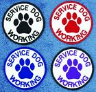 """Service Dog Working Patch 3"""" assistance support Disabled Medical Danny & LuAnn"""