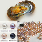 New 100pcs Akoya Pearl Oysters With Real Pearl 7-8mm Freshwater Vacuum Packaging