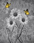 Yellow Gray Wall Art Pictures, Daisy Flowers Butterflies Home Decor Picture