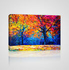 Colorful Autumn Trees Framed Canvas Print - YC21