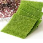 Miniature Fairy Garden Grass Lawn Ornament Decor DIY Craft Accessories Dollhouse