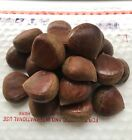 Fresh Chestnuts-Imported-1 LBS 2LBS 3 LBS 4LBS-READY TO BOIL /ROASTED-US SELLER