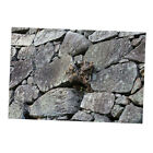 Aquarium Fiah Tank Backdrops Frost / Stone /Tree Root / Tree Bark Background