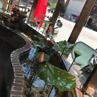 Decorative Water Standing Lotus Leaf Statue Ornament Arts Garden Pond Decor