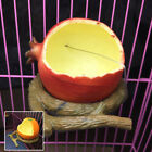 Pet Hanging Bowl Plastic Fruit Shape Dog Cat Feed Food Bird Water Dish Cage
