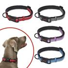Halti Premium Strong Adjustable Reflective Dog Collar Black Red Blue FREE P&P