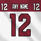 Arizona Cardinals White NFL Football Jersey Any Name Any Number Lettering Kit