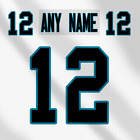 Carolina Panthers White NFL Football Jersey Any Name Any Number Lettering Kit $39.99 CAD on eBay
