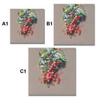 Lychee Fruit Art Wall Painting Canvas Frameless Print Hanging Picture Home NOI