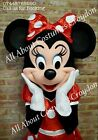 Hire Florida Disneyland Mickey & Minnie Costume **Only for Hire** Home Delivery