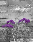 Purple Gray Rustic Floral Home Decor Wall Art Pictures USA Handmade Wall Decor