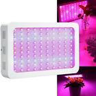 1000W LED Grow Light Double chips IR Full Spectrum Hydroponic Veg Indoor Plant