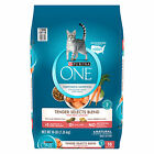 Внешний вид - Purina ONE Natural Tender Selects Blend With Real Salmon Dry Cat Food