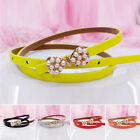 Candy Belt Colors Toddler Casual Children Color Boys Colorful Girls Sale