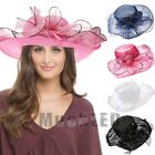 Lady Women Church Kentucky Derby Hat Sheer Wide Brim Dress Wedding Tea Party Cap