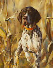 FRAMED CANVAS ART PRINT PAINTING GERMAN SHORTHAIRED POINTER HUNTING DOG