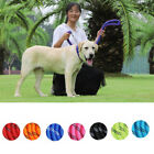 Reflective nylon round rope dog collar dog traction pet night running walkingLDU