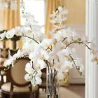 7 Heads Artificial Butterfly Flower Orchid Silk Floral Wedding Party Home Decor