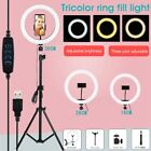 "8"" 10"" 12"" LED Ring Light with Tripod Stand  Phone Holder Dimmable Lighting Kit"