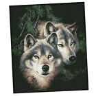 Cross Stitch Kit, Preprinted Cross Stitch Kit Embroidery Picture Embroidery