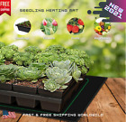 Seedling Heating Mat Waterproof Plant Seed Hydroponic Propagation Clone Flower picture