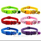 DOGS AND CATS COLLARS