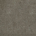 Light Brown Hardwearing Feltback Carpet Roll Lounge Bedroom Stairs 4m Wide Cheap
