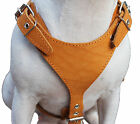 Genuine Leather Dog Harness Excercise Walk 25