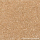 5 Metre Wide Carpet, Light Beige 'Cappuccino' Quality Feltback Twist, Five M