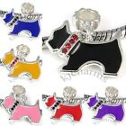 Cute Puppy Dog Silver CZ Dangle European Spacer Charm Bead For Bracelet Necklace
